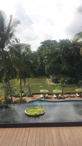 Hotel Bali Ubud plataran