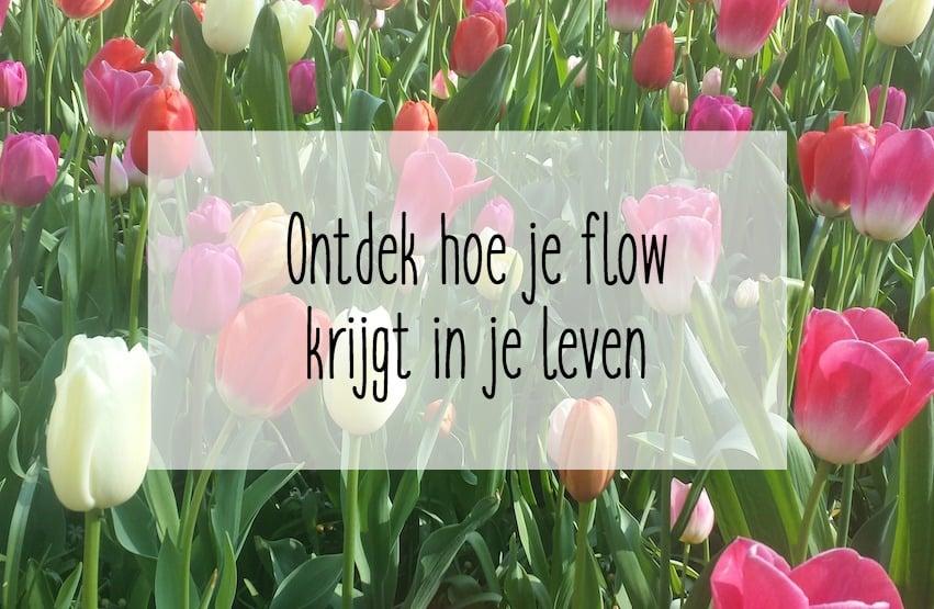 flow leven