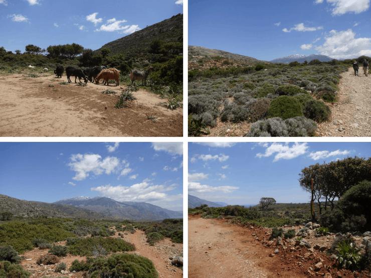landschap Kreta