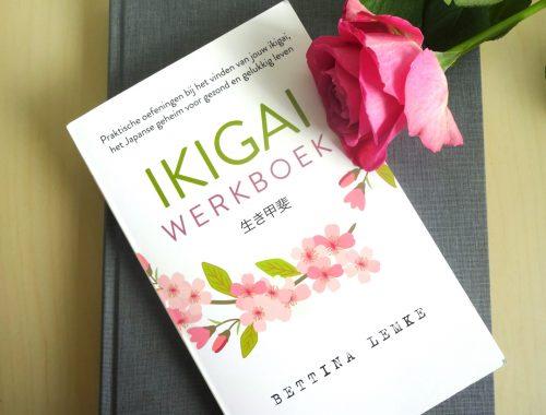 ikigai werkboek