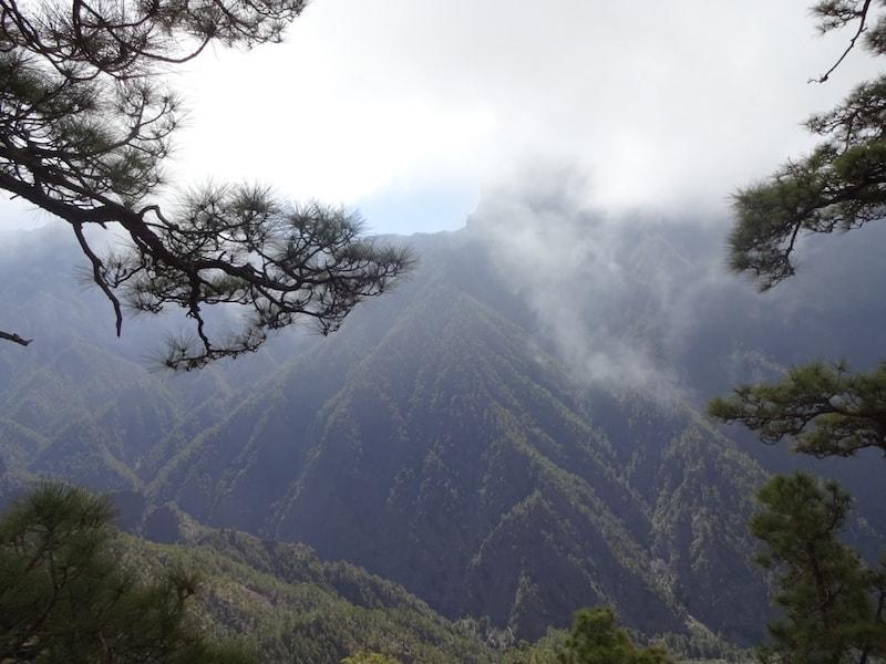 La Palma Mirador de Los Brecitos