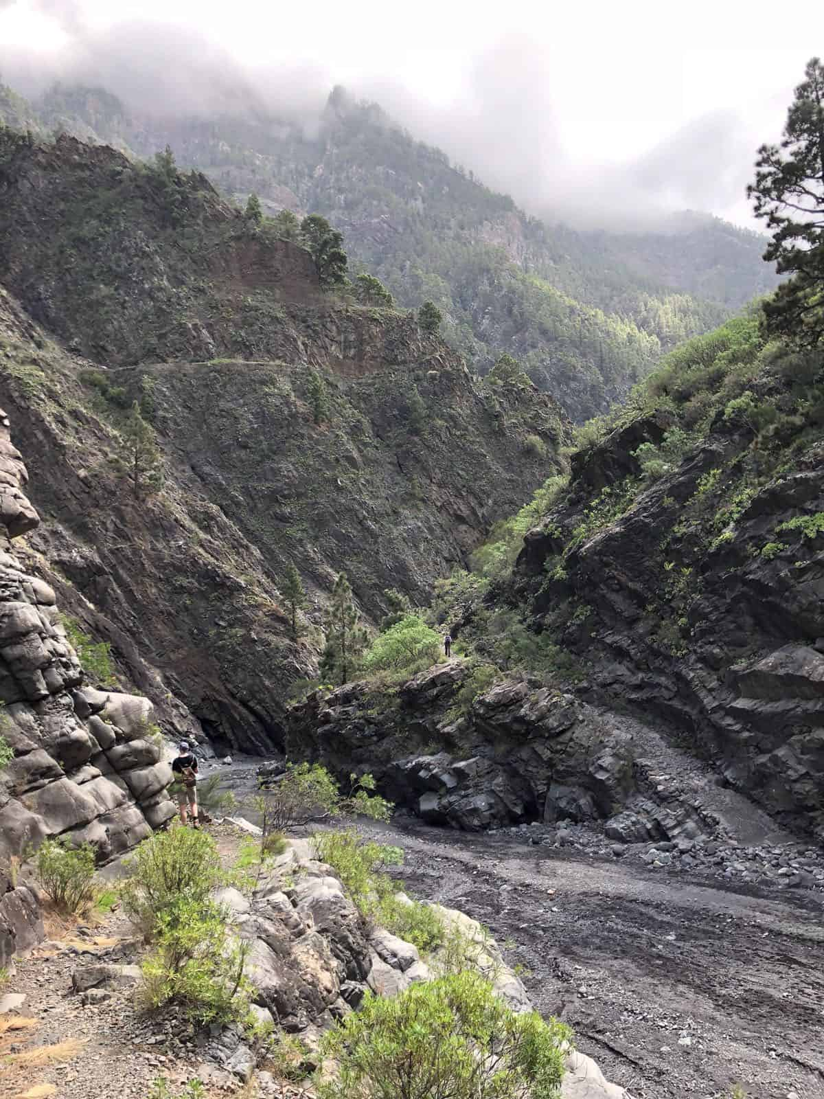 La Palma Barranco de Las Angustias