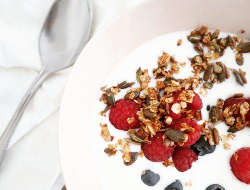 granola uit de pan yoghurt zomerfruit