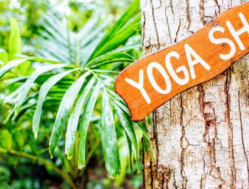 yoga retreat kiezen